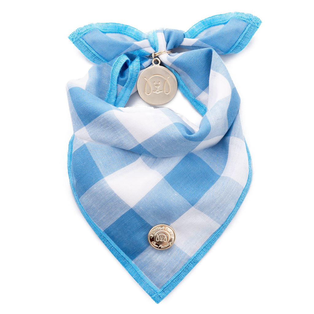 Chill Pups Blue Gingham Bandana with Accessories For Dogs by United Pups