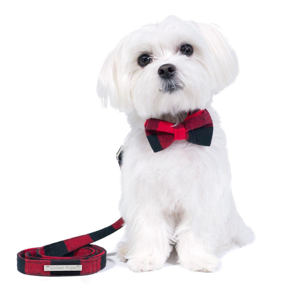 Cool Pup Red Gingham Plaid Collar with Bow Tie and Leash for Dogs by United Pups