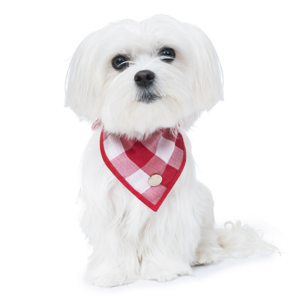 Cool Pups Red Gingham Bandana with Accessories For Dogs by United Pups