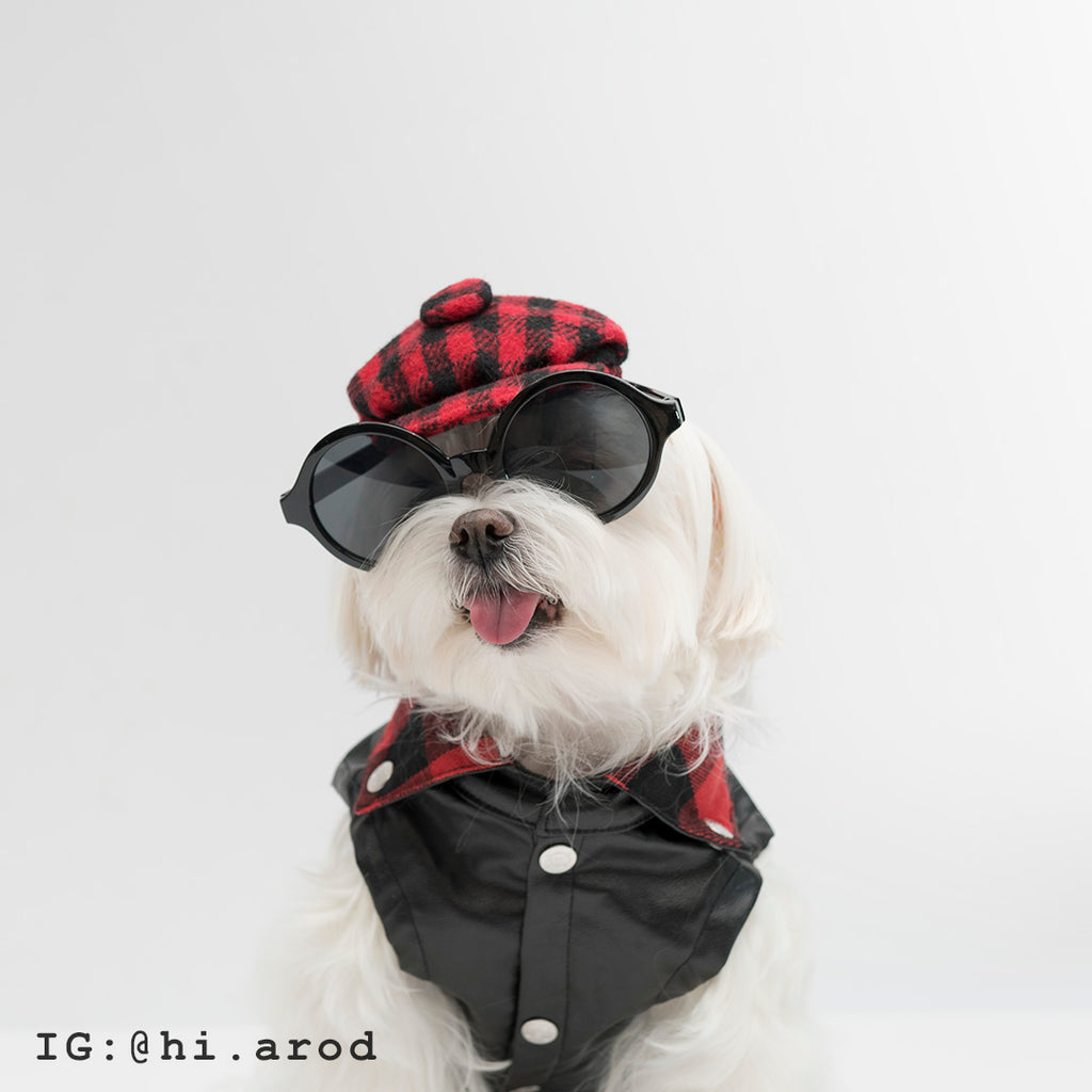 Cool Pups Buffalo Plaid Leather Vest