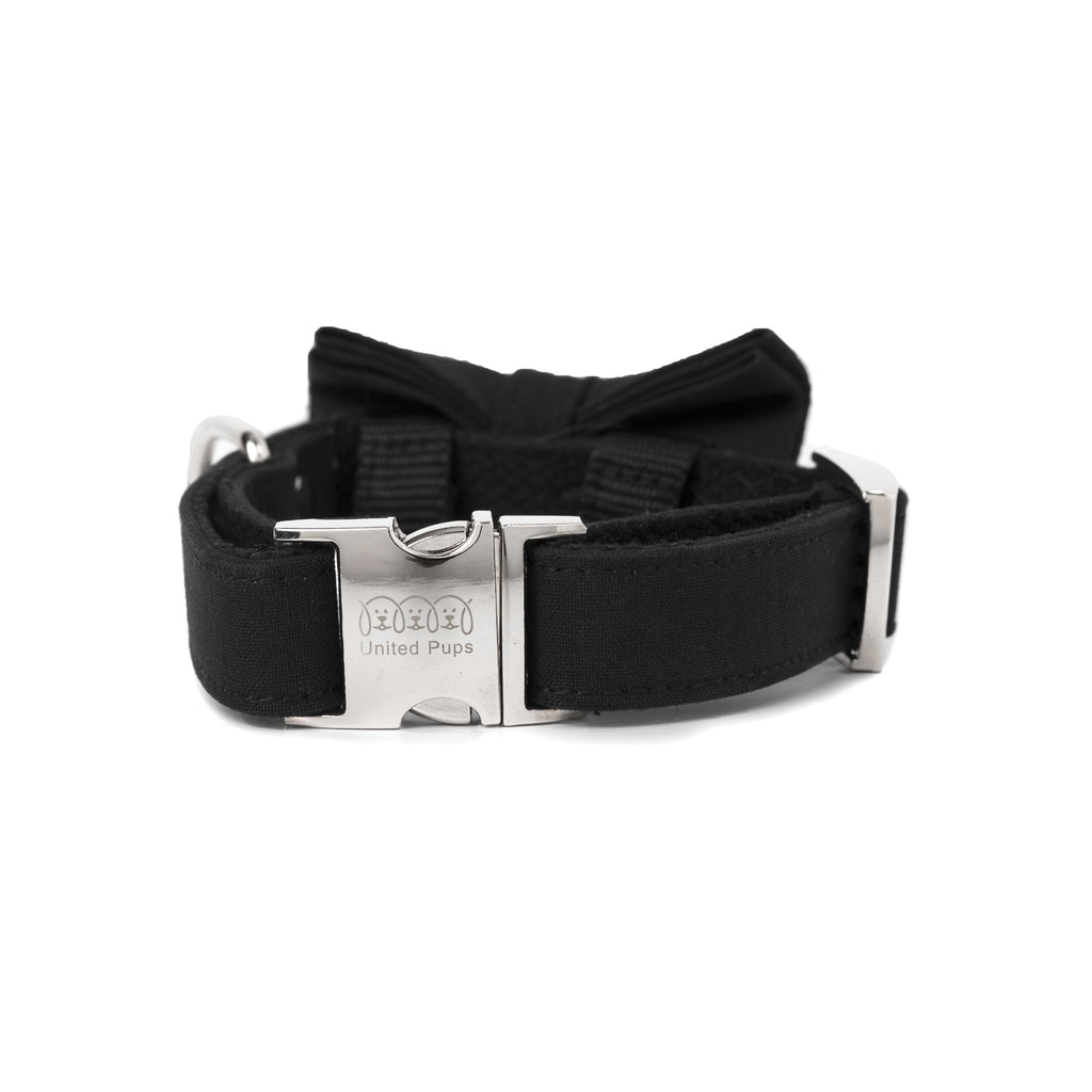Modern Pups Classy Black Collar Bow Tie and Leash