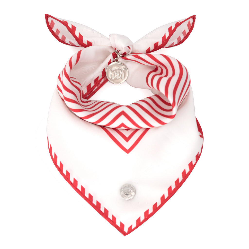 Cool Pups Red Silk Striped Bandana with Accessories by United Pups