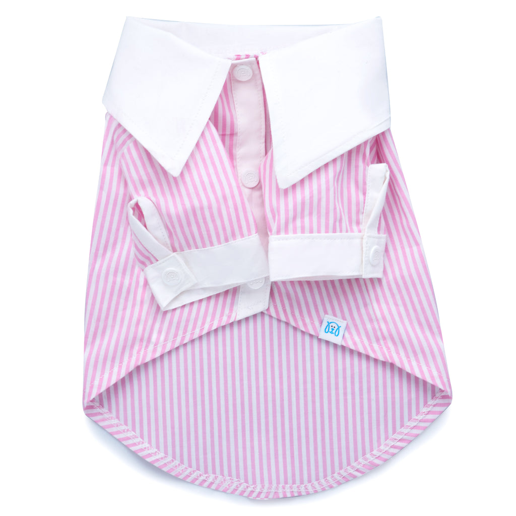 Cool Pups French Contrast Striped Dress Shirt in Pink for Dogs by United Pups