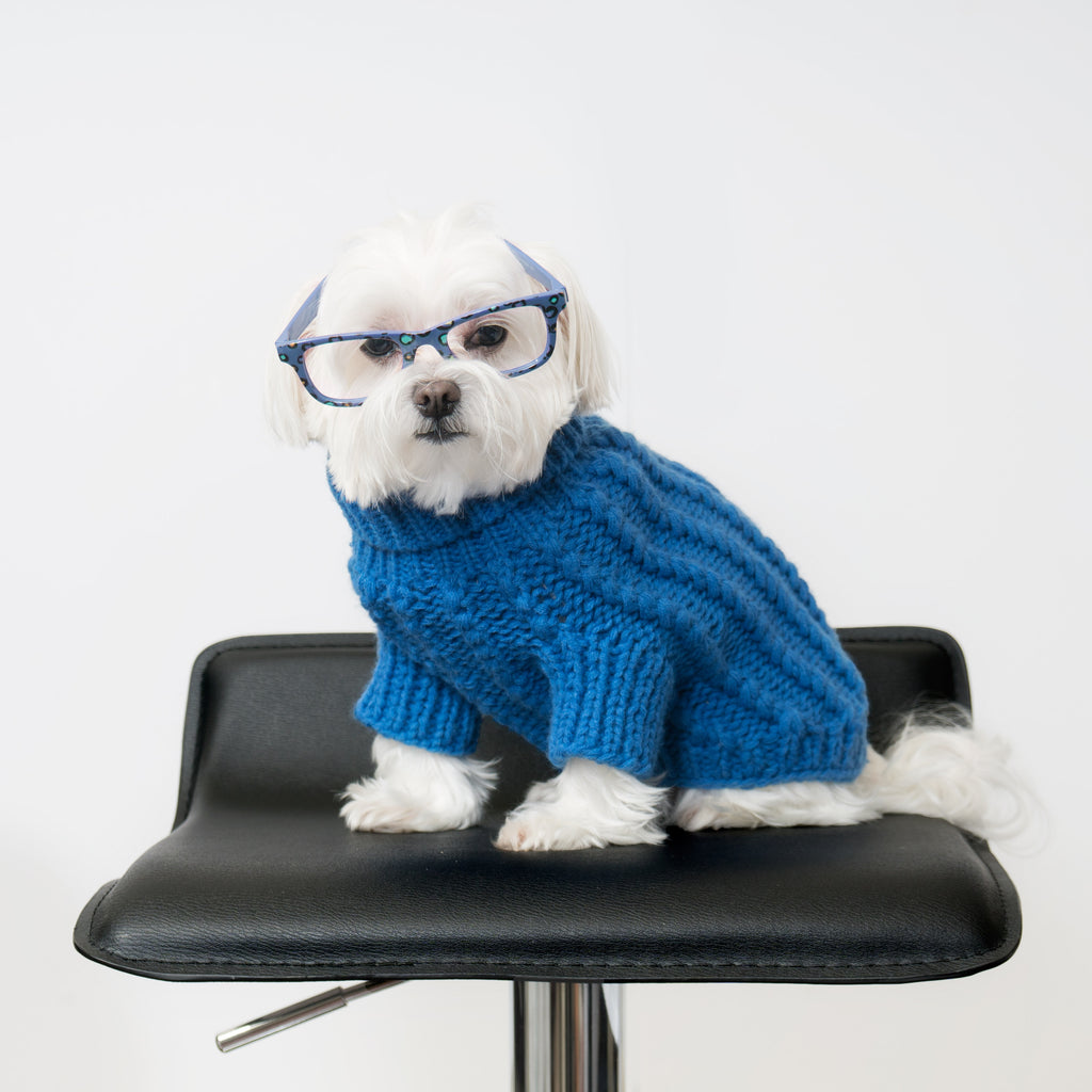 Chill Pups Blue Cable Knit Sweater