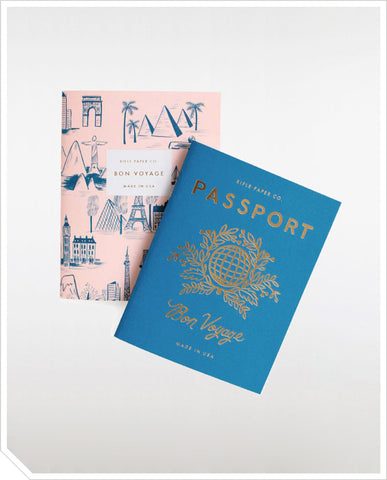Pocket Notebook Set - Passport