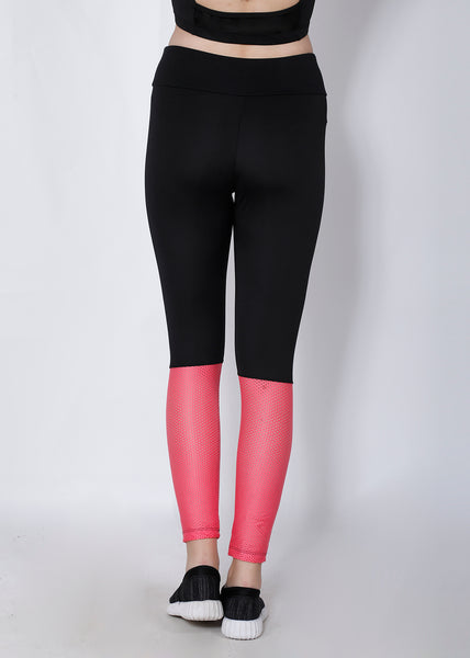 Black Pink Mesh 2Tone Tights