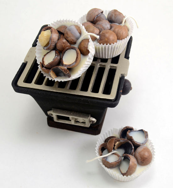 Macadamia Shells Fire Starters 6 Large with Shipping Included