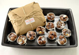 Eco Fire Starters 12 Macadamia Shells Set with Shipping Included