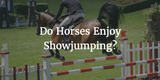 Do Horses Enjoy Showjumping?