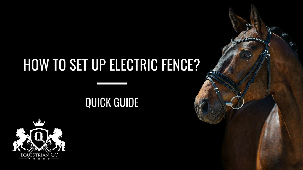 How to Set Up Electric Fence? Quick Guide
