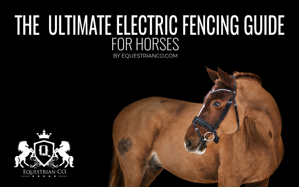 The Ultimate Electric Fencing Guide for Horses [Infographic]