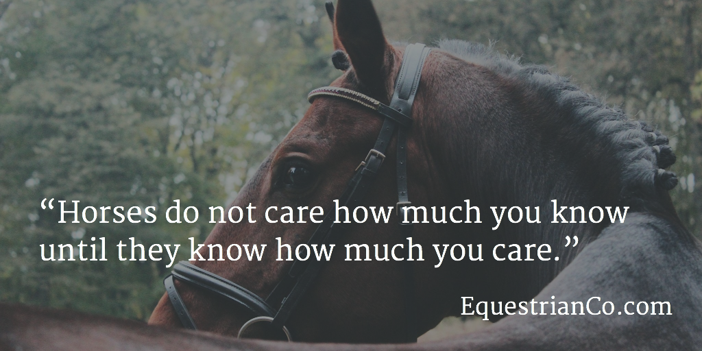 Horses do not care how much you know until they know how much you care.