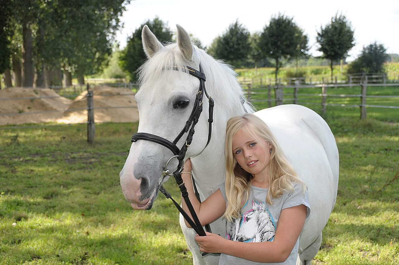 pony and a girl