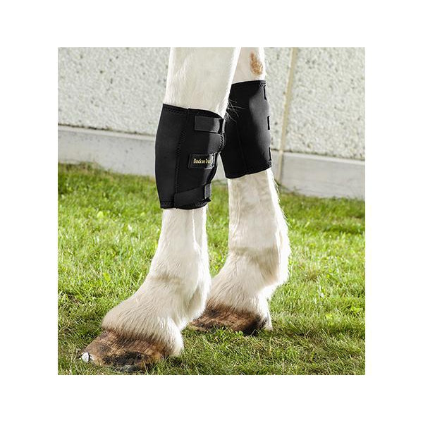 Back On Track® Welltex™ Equine / Horse Knee Boots