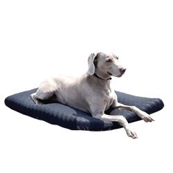 Back on Track® Welltex™ Standard Canine / Dog Mattress
