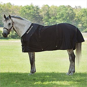Back on Track® Equine / Horse Classic Mesh Sheet