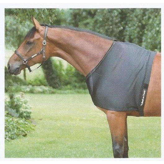 Back on Track® Equine / Horse Shoulder Guard