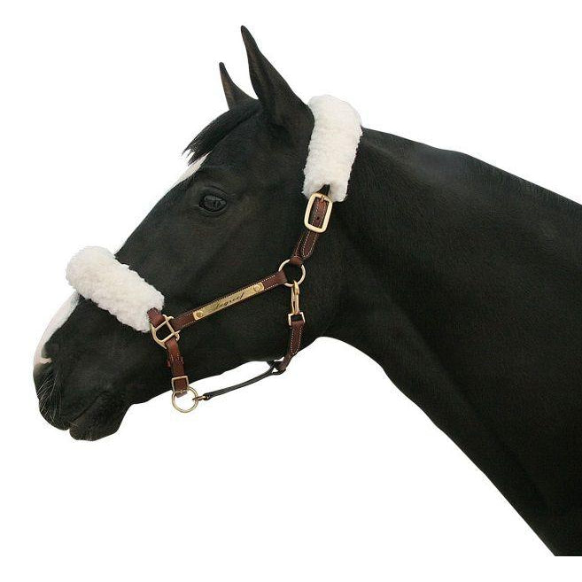 Back on Track® Equine / Horse Halter Cover