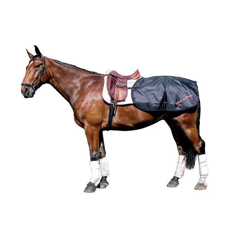 Back on Track® Equine/Horse Loin Rug/Quarter Sheet
