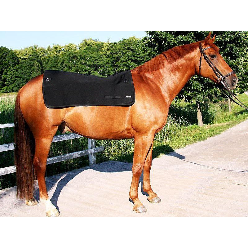 Back on Track® Standard Horse / Equine Back Warmer