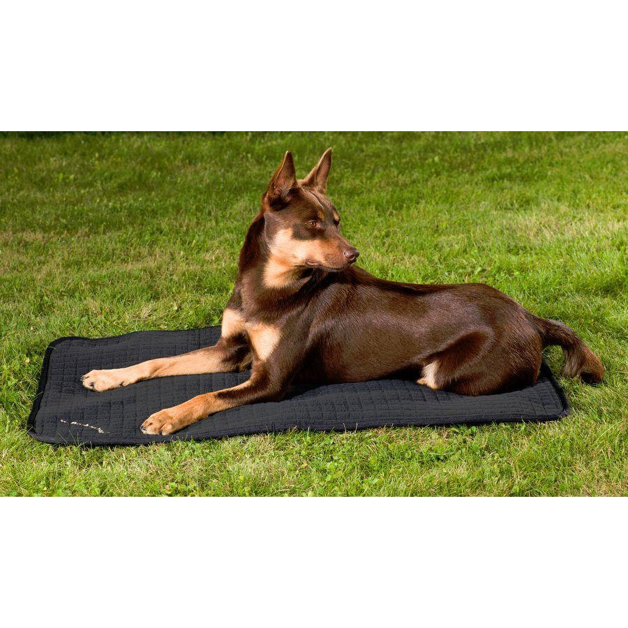 Back on Track® Welltex™ Allround Canine / Dog Mattress