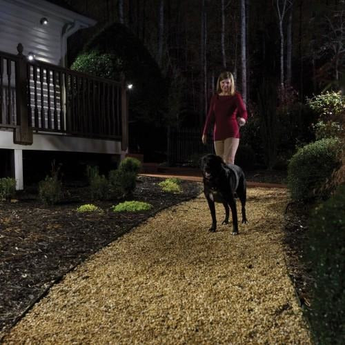 Mr Beams Wireless Networked NetBright LED Spotlight System-Equestrian Co.