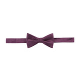 Bowtie 100% Silk Regular Wine Texture