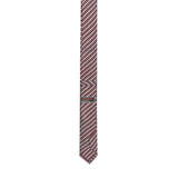 Neckties 100% Silk Regular TSD 16567 6