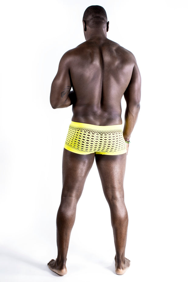 Jamaica Mesh Couture Briefs