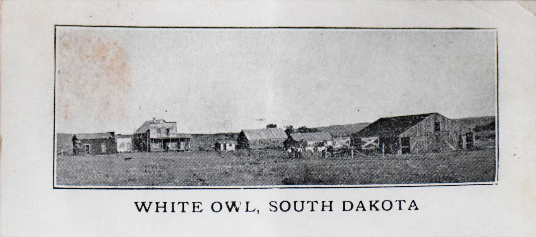 White Owl, SD Postcard circa 1910
