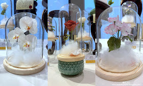 eat cake today-cake delivery-the cake show-cake trends 2020-sugar flower-bell jar sugar flower