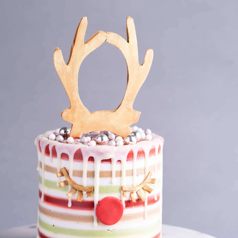 "Rudolph Sparks 5"" - Designer Cake - Kak Sal Kueh - - Eat Cake Today - Birthday Cake Delivery - KL/PJ/Malaysia"