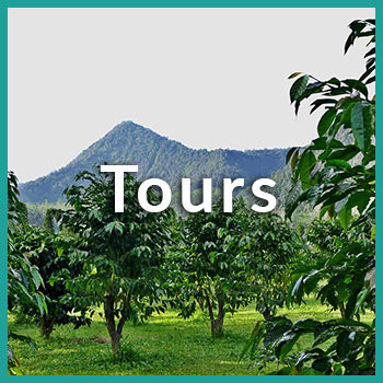 coffee farm tours