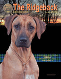 Single copy of The Ridgeback magazine YOU MUST INDICATE THE ISSUE YOU WANT ON THE FORM BELOW