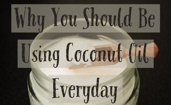 Why You Should be Using Coconut Oil Everyday