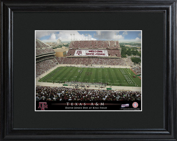 College Stadium Print with Wood Frame - Available in 15 Teams