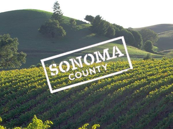 Sonoma County Wine Collection