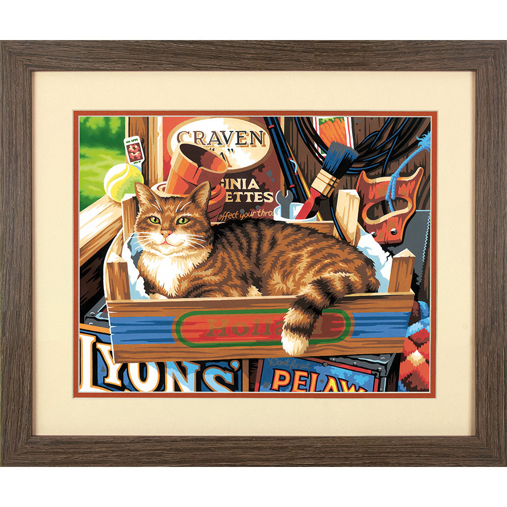 DIM91655 Paintworks Cat Signs