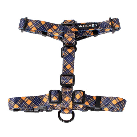 Clueless All Purpose Dog Harness