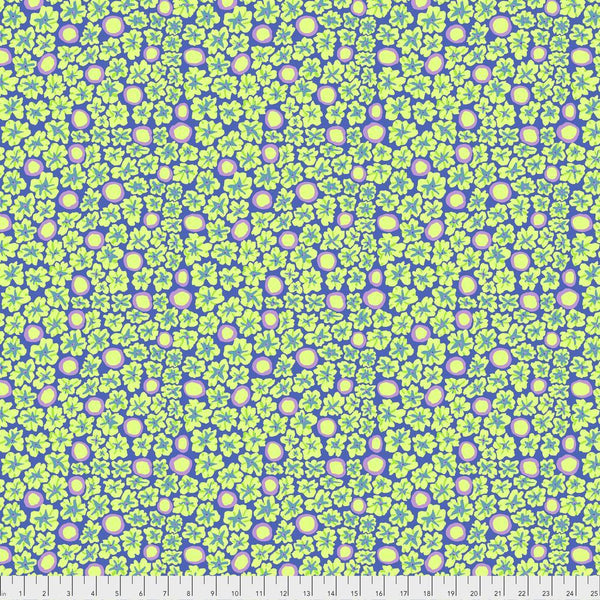 Brandon Mably Primulas - Periwinkle