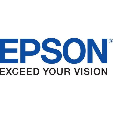 EPSON S020191/S020089 Color Ink Cartridge