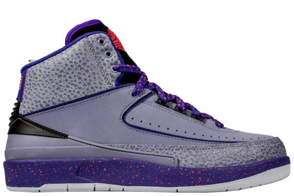 "AIR JORDAN 2 ""IRON PURPLE"""
