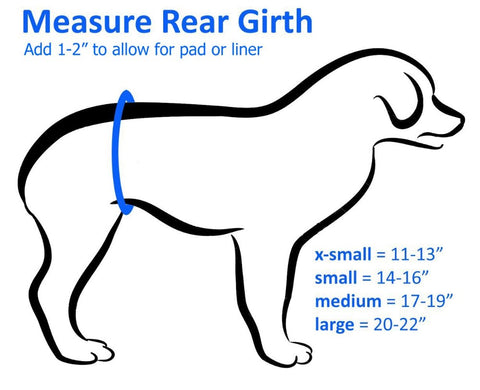 How to Measure Your Dog For a Belly Band