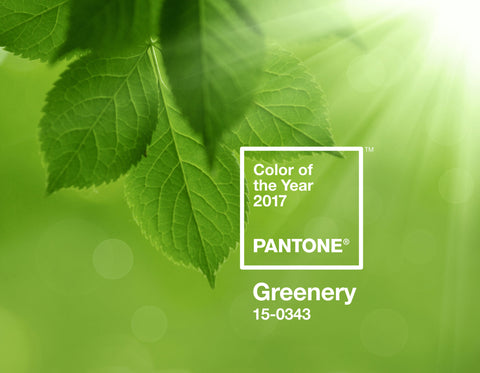 Greenery Pantone 2017 color of the year