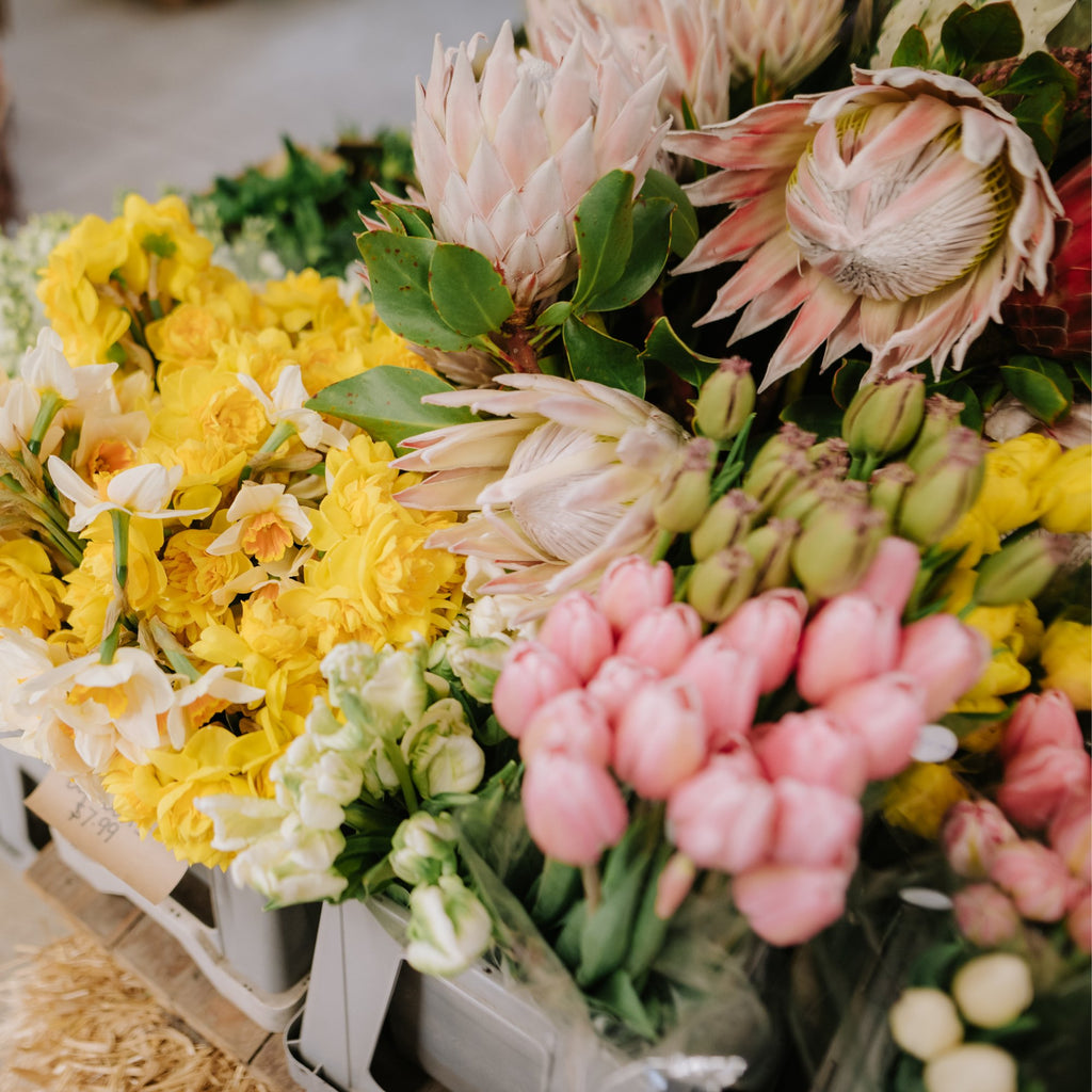 The Country Providore store has a selection of fresh vibrant flowers for every special occasion. Along with a range of gift ideas, gift hampers and cards to go with flowers for a special someone. Located close to Hamilton, Tamahere and Cambridge NZ.