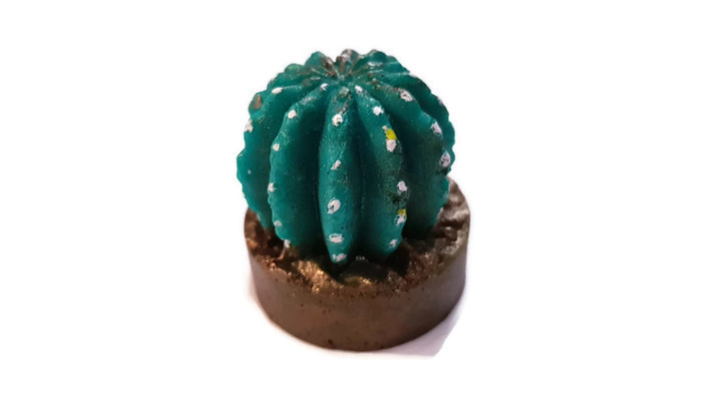 Cactus in Pot Silicone Mould