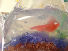 Fish In A Bag DIY Soap Making Kit - Makes 10