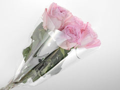 Florist Clear Sleeve x 10 Pack