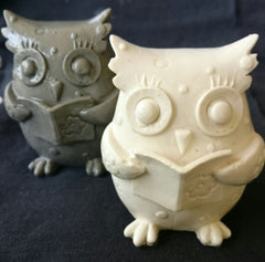 Owl Reading Silicone Mould