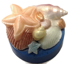 Seaside Scene Shells Silicone Mould